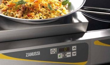Easy cooking tops Zanussi Prodessional
