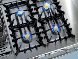 Flower Flame Zanussi Professional